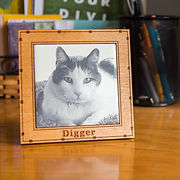 Engraved photo tile memorializing pet.