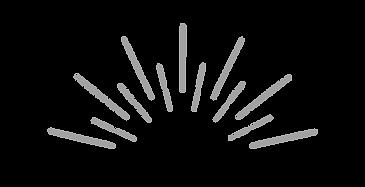 fotografie logo schein dunkler.png