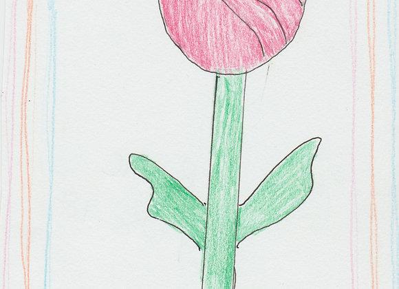 Color Pencil rose