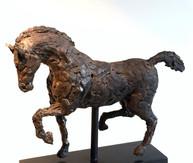 """""""Equus Standing"""""""