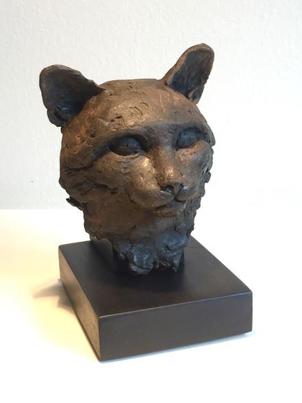 """Portrait of the Cat"""