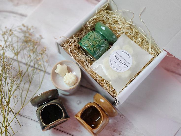 Mini Wax Burner and Aromatherapy Wax Melts set