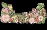 WildflowerByAnna-01.png