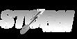 Storm Logo 500 inverted.png