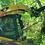 Thumbnail: GLACIER TREE PULLER
