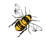 Bee-2-rt.png
