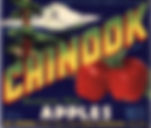 Collection Thumbnail Chinook Apples.jpg