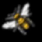 Bee-3-lt.png