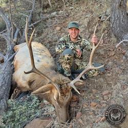Unit 22S late season rifle bull elk 2