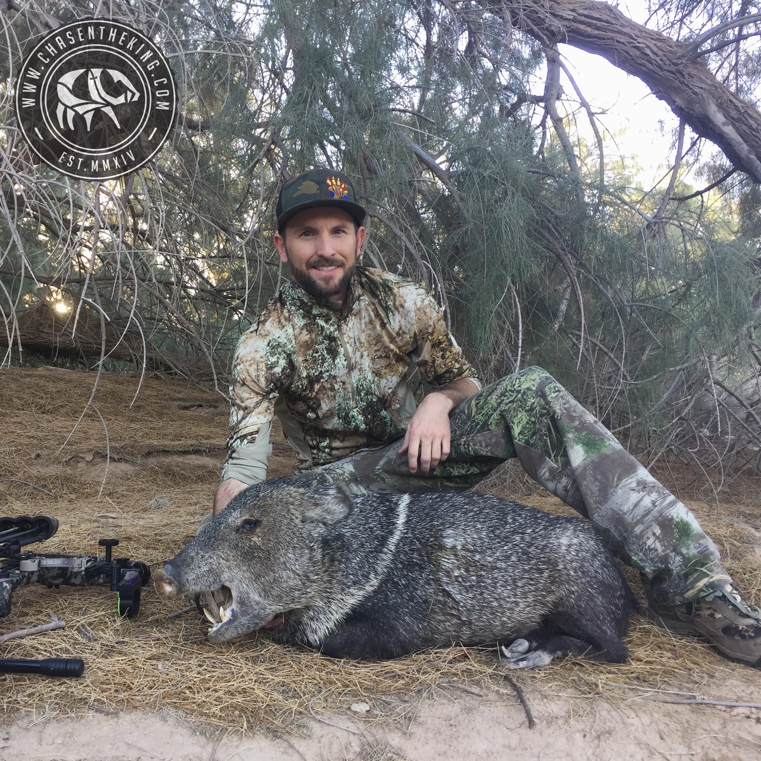 Arizona Javelina Hunt 18