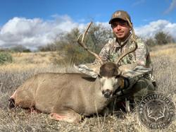 Arizona OTC archery mule deer 9