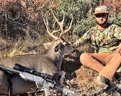 Arizona OTC archery mule deer 17