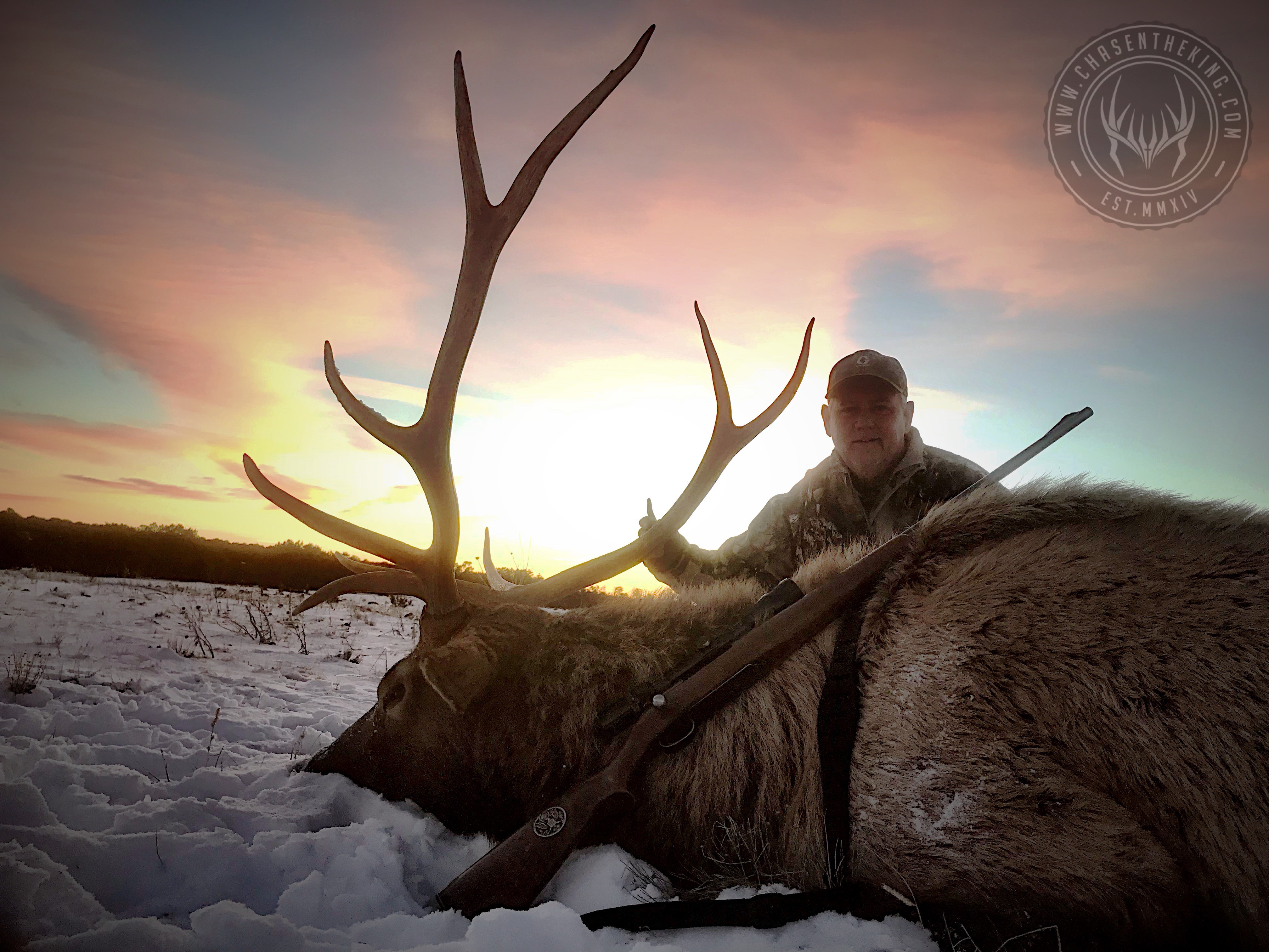 Unit 5A late season rifle bull elk 3