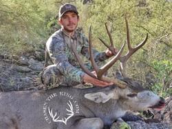 Arizona OTC archery mule deer 3