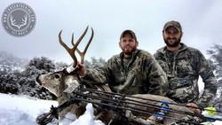 Arizona OTC archery mule deer 13