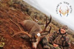 Unit 12AW Kaibab rifle Mule deer 3