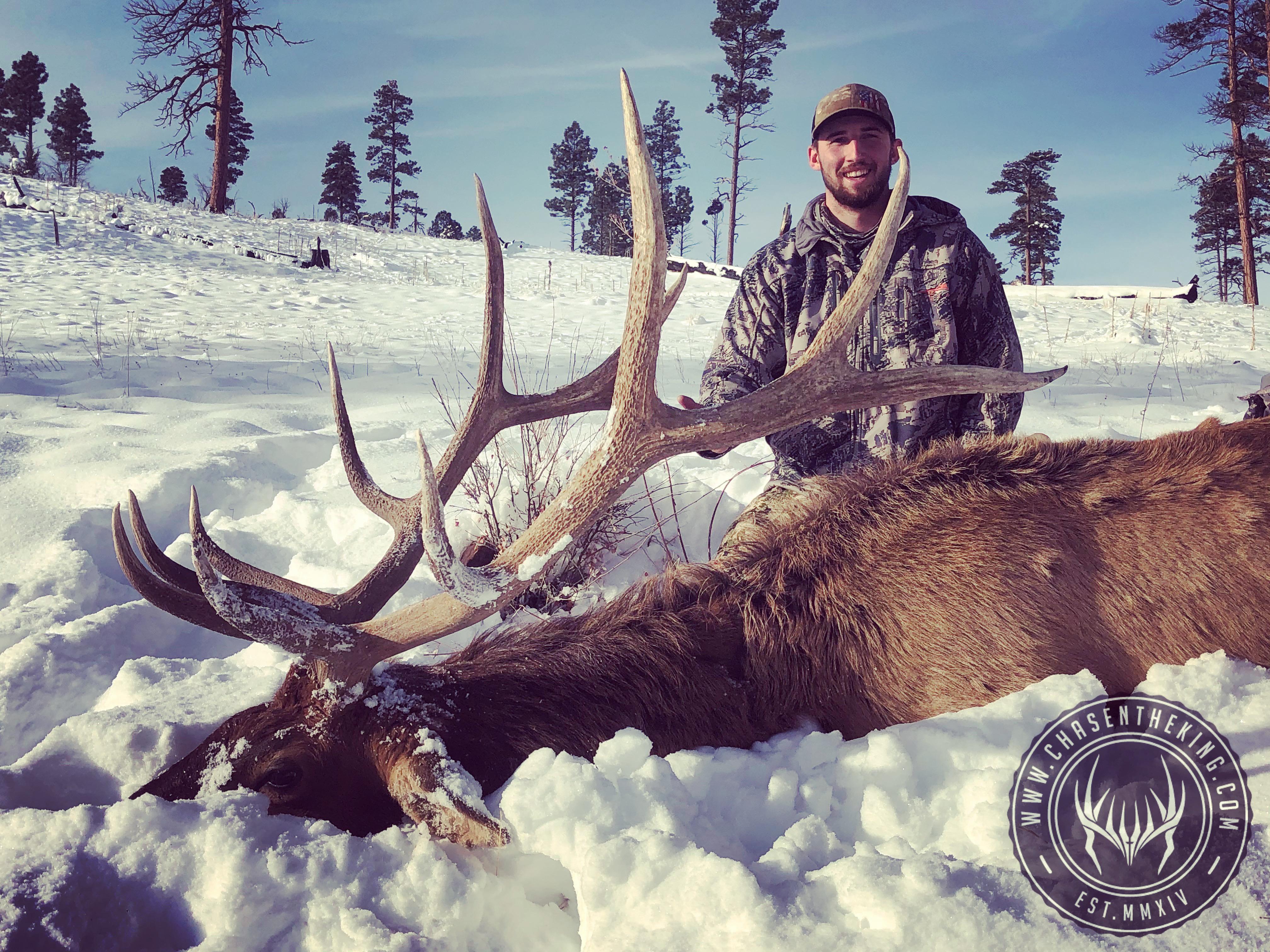 Unit 5B late season rifle bull elk 4