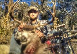 Arizona OTC archery mule deer 12