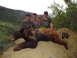 Arizona OTC rifle black bear 43