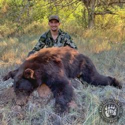 Arizona OTC rifle black bear 10