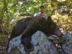 Arizona OTC rifle black bear 3