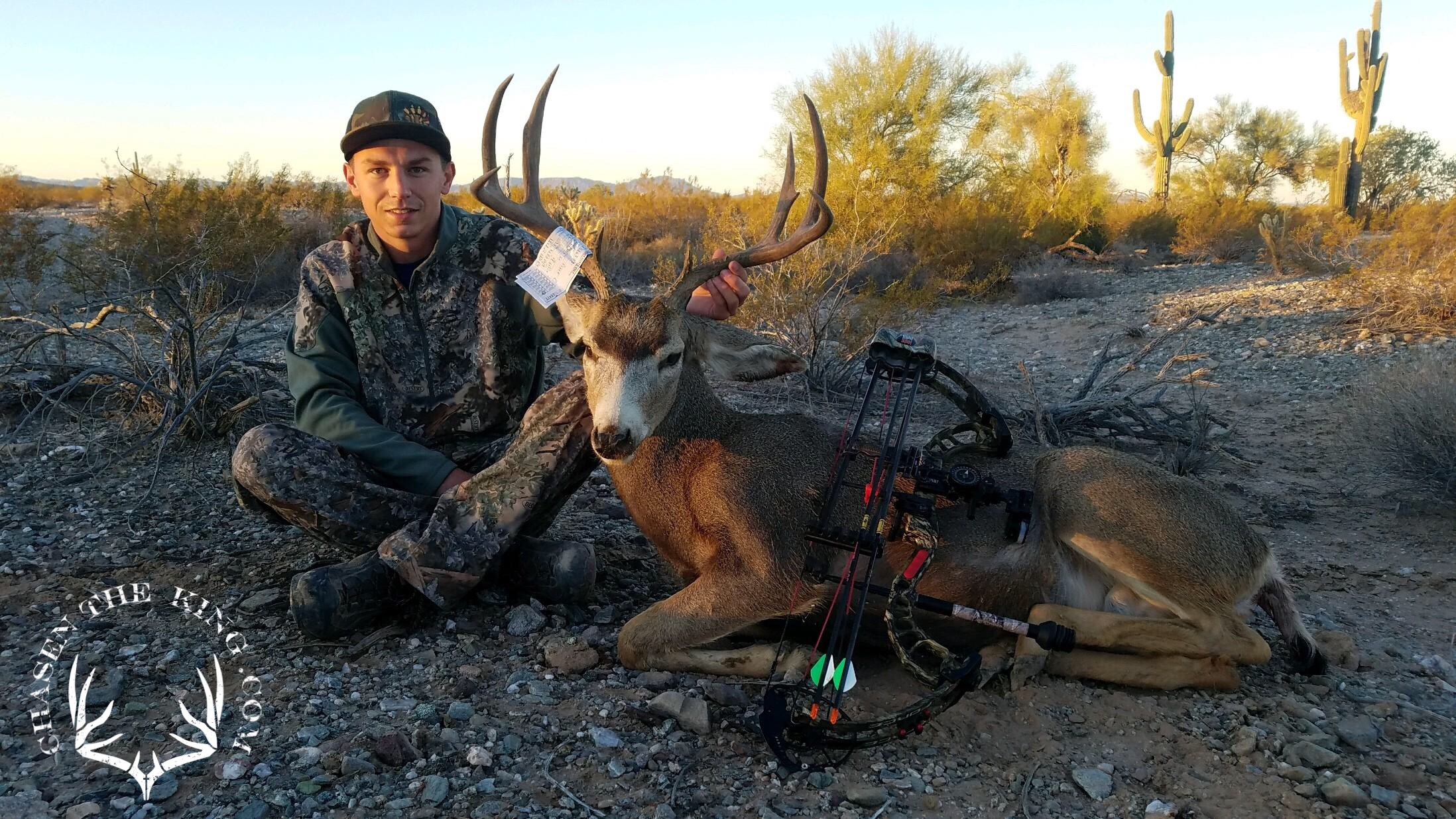 Arizona OTC archery mule deer 7
