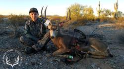 Arizona OTC archery mule deer 7