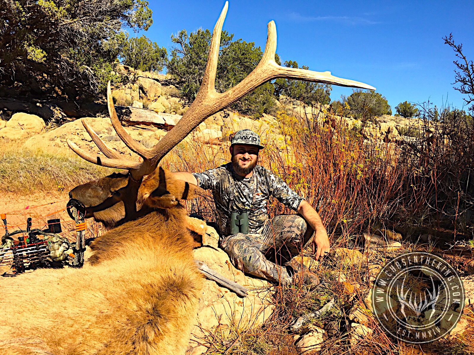 Unit 5A early archery bull elk 4