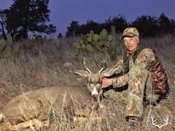 Arizona OTC archery mule deer 8