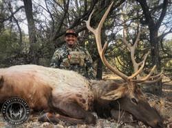 Unit 5B late season rifle bull elk 13