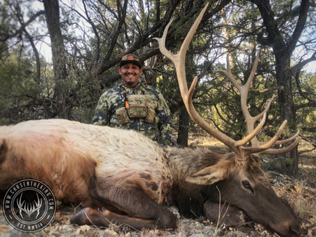Air Jordan: 5B Late Rifle Bull Elk