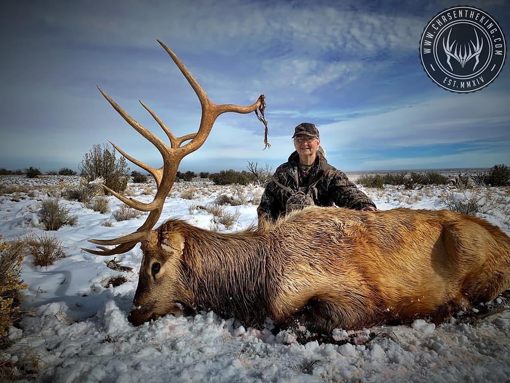 Sharon's 5A Late Rifle Bull Elk