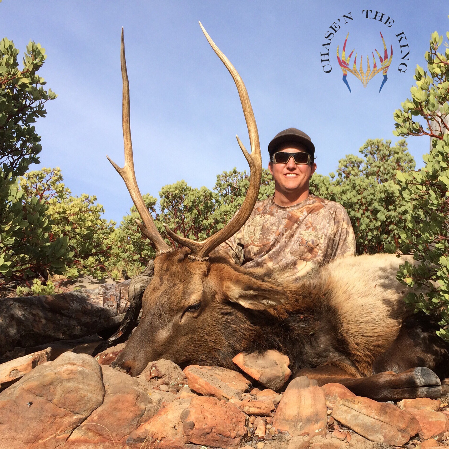 Unit 22N late rifle bull elk 1