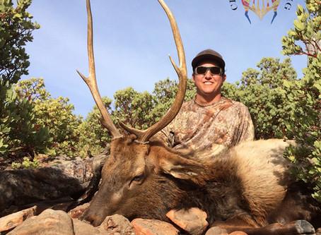 Plateau: Late Rifle Bull