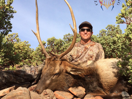 Plateau: Unit 22N Late Rifle Bull