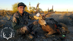 Arizona OTC archery mule deer 6
