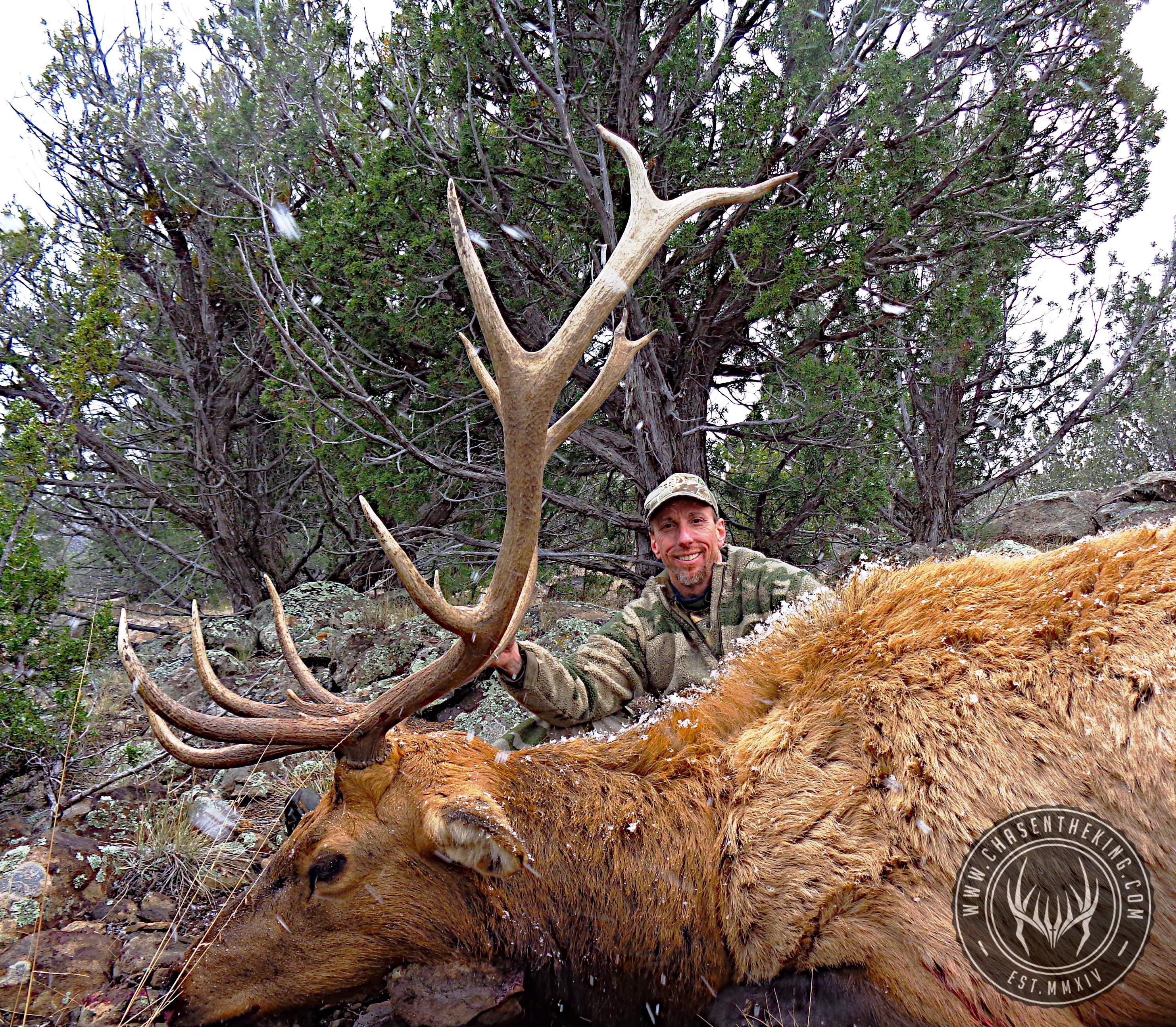 Unit 5B late season rifle bull elk 3