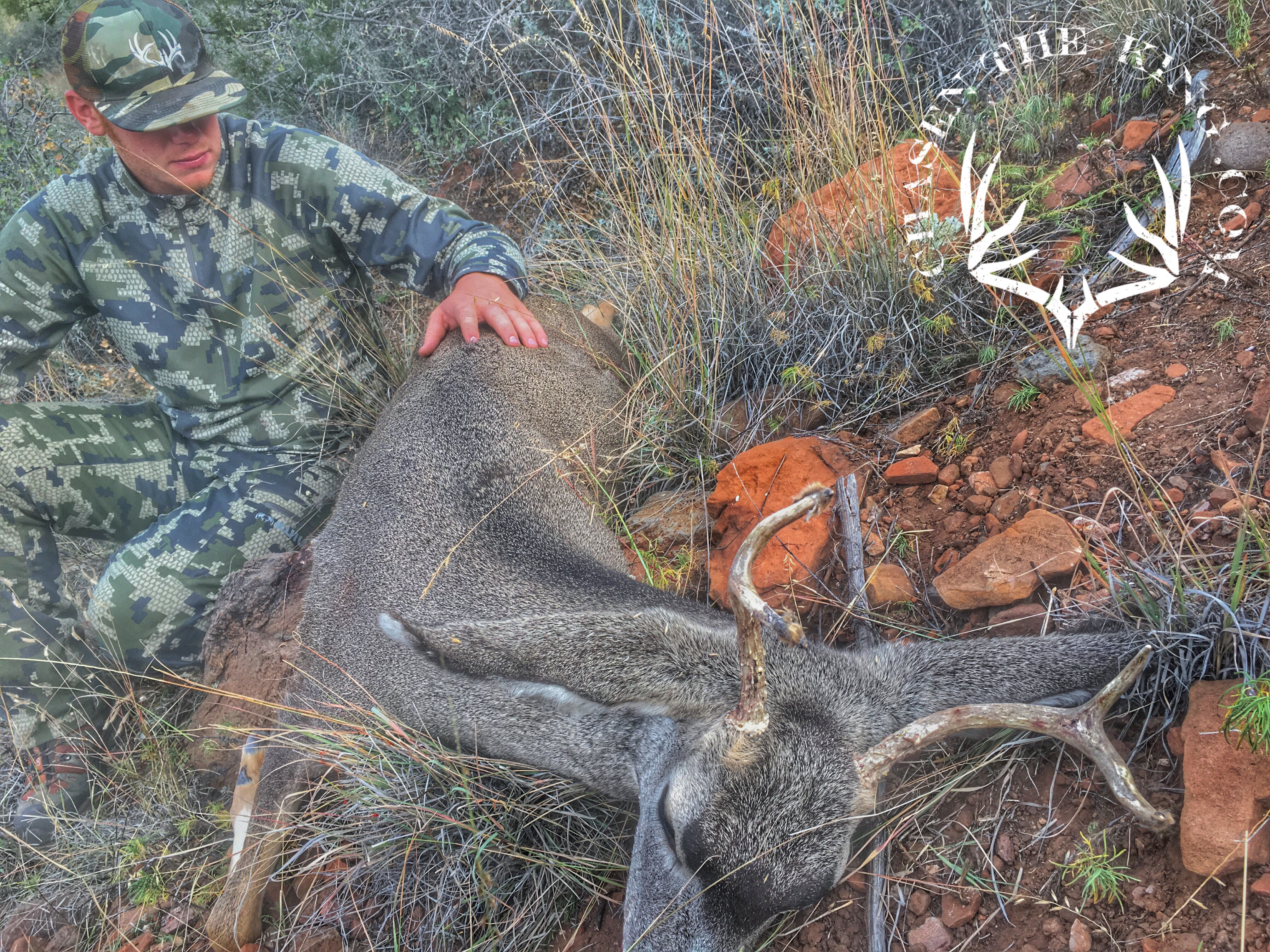 Unit 6B muzzleloader mule deer 1