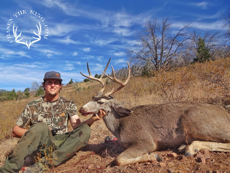 Unit 23 Rifle Mule Deer: Hunt Overview