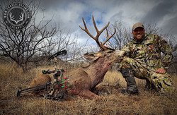 Arizona OTC archery mule deer 23