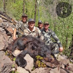 Arizona OTC rifle black bear 33