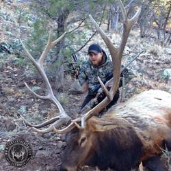 Unit 5B late season rifle bull elk 9