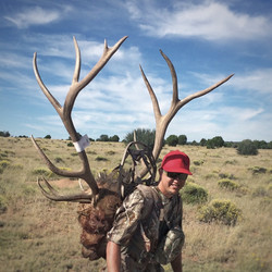 Unit 7 West early archery bull elk 3