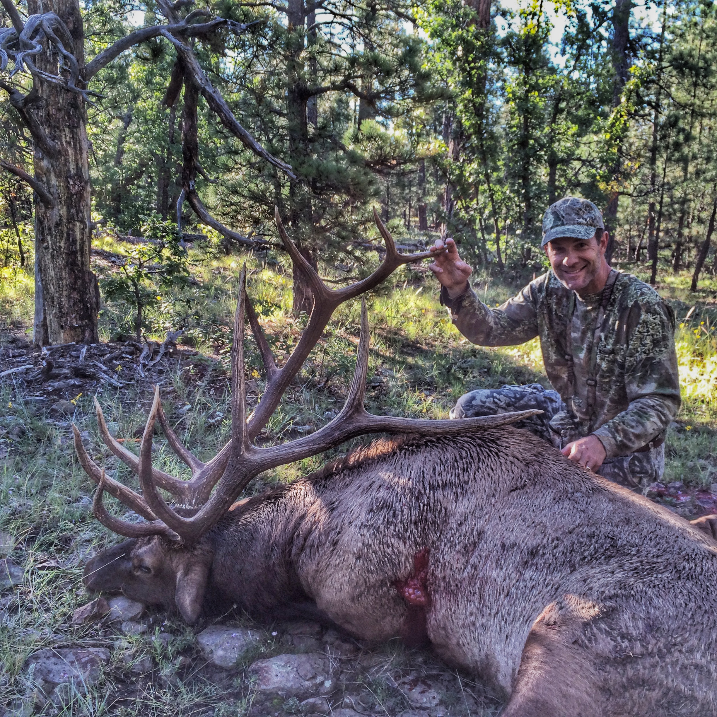 Unit 6A early archery bull elk 4