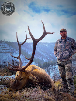 Unit 5A late season rifle bull elk 4