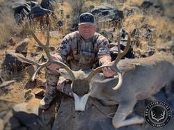 39-41 Desert Mule Deer 2