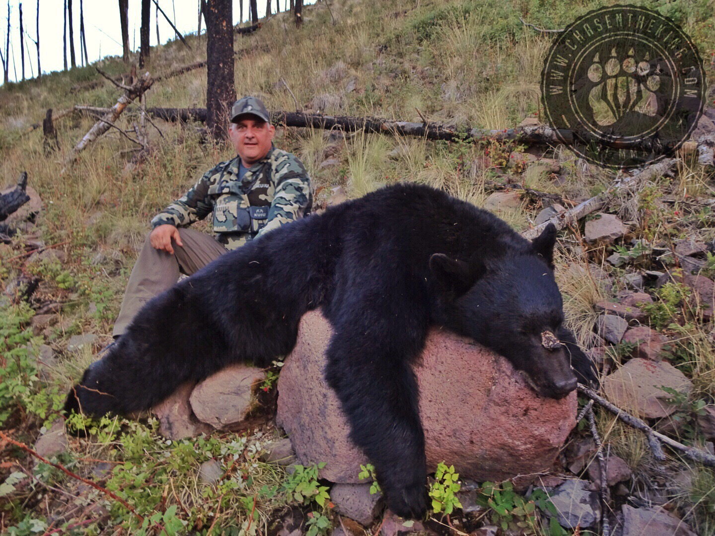 Arizona OTC rifle black bear 35