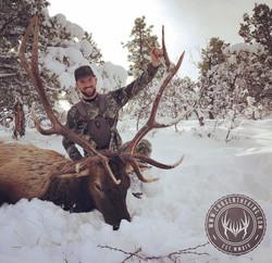 Unit 8 late season rifle bull elk 5