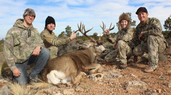 Unit 12AW Kaibab rifle Mule deer 9
