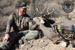 Arizona OTC archery mule deer 29